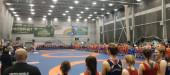 Тихвинские борцы завоевали больше 50 медалей